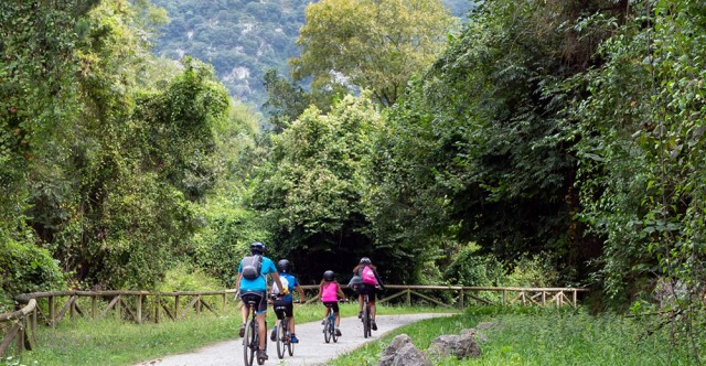 The Trail Less Traveled: National Park Bike Adventures